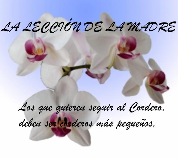 IDDSMM, IGLESIA DE DIOS SOCIEDAD MISIONERA MUNDIAL, CRISTO AHNSAHNGHONG, DIOS MADRE