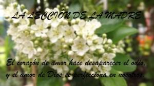 (IDDSMM)La Iglesia de Dios Sociedad Misionera Mundial(IDDSMM) practica la lección de Dios Madre.